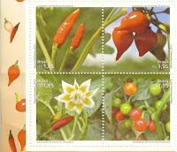 Varieties of Brazilian Peppers