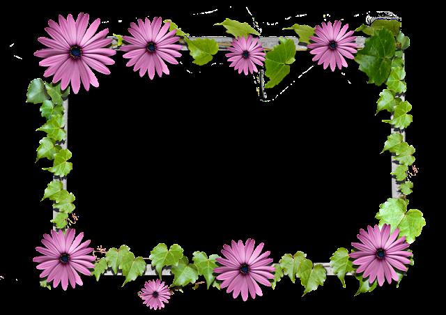Colecci n de gifs marcos para fotos de flores - Marcos para plantas ...
