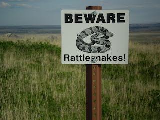 Graham Sedam, blog, thoughts, life, interests, beware, rattlesnakes, signs, Badlands, South Dakota, prairie grass, randomness, random