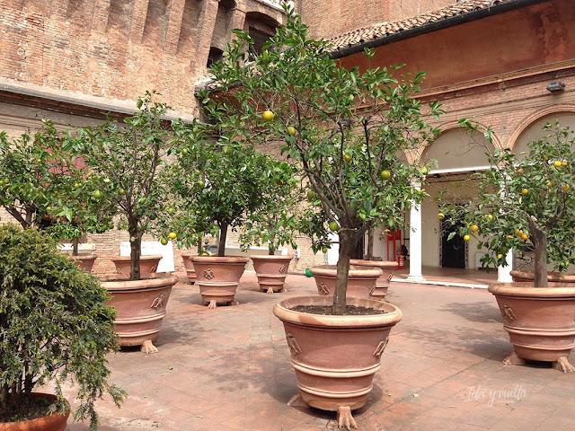 Castillo Estense jardín