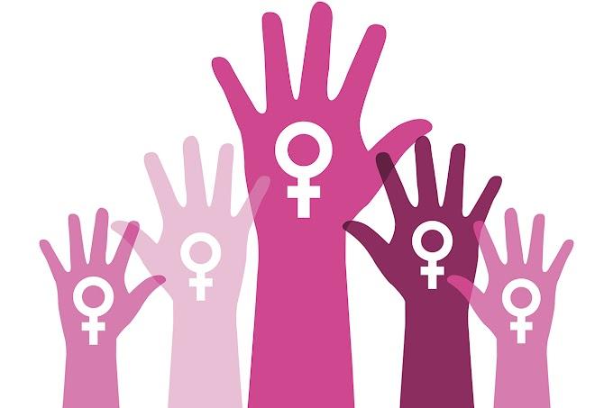 Porque eu sou feminista?
