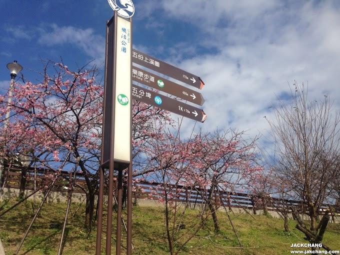 台北【內湖】東湖站 樂活公園櫻花林2019-市區賞櫻景點