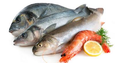 ikan yang tidak boleh dimakan