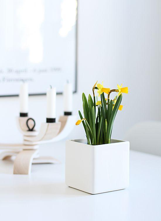 jednoduchý bílý květináč