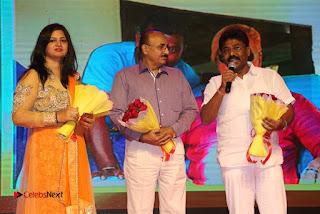 Aakatayi Audio Launch Stills  0032.jpg