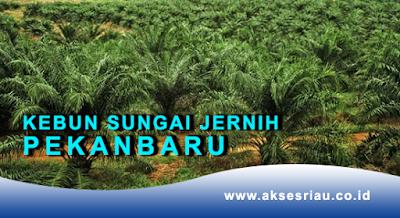 Lowongan PT. Kebun Sungai Jernih Pekanbaru Desember 2017