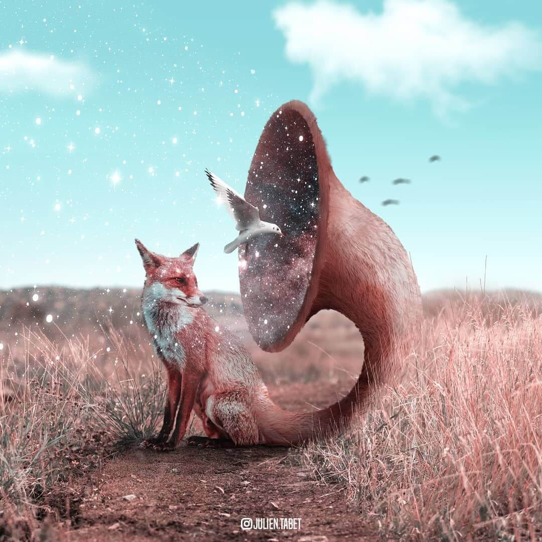 11-Discover-Yourself-Julien-Tabet-Surreal-Animal-Photo-Manipulation-www-designstack-co