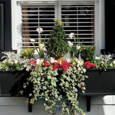 Cottage Flavor: Window Boxes Abloom