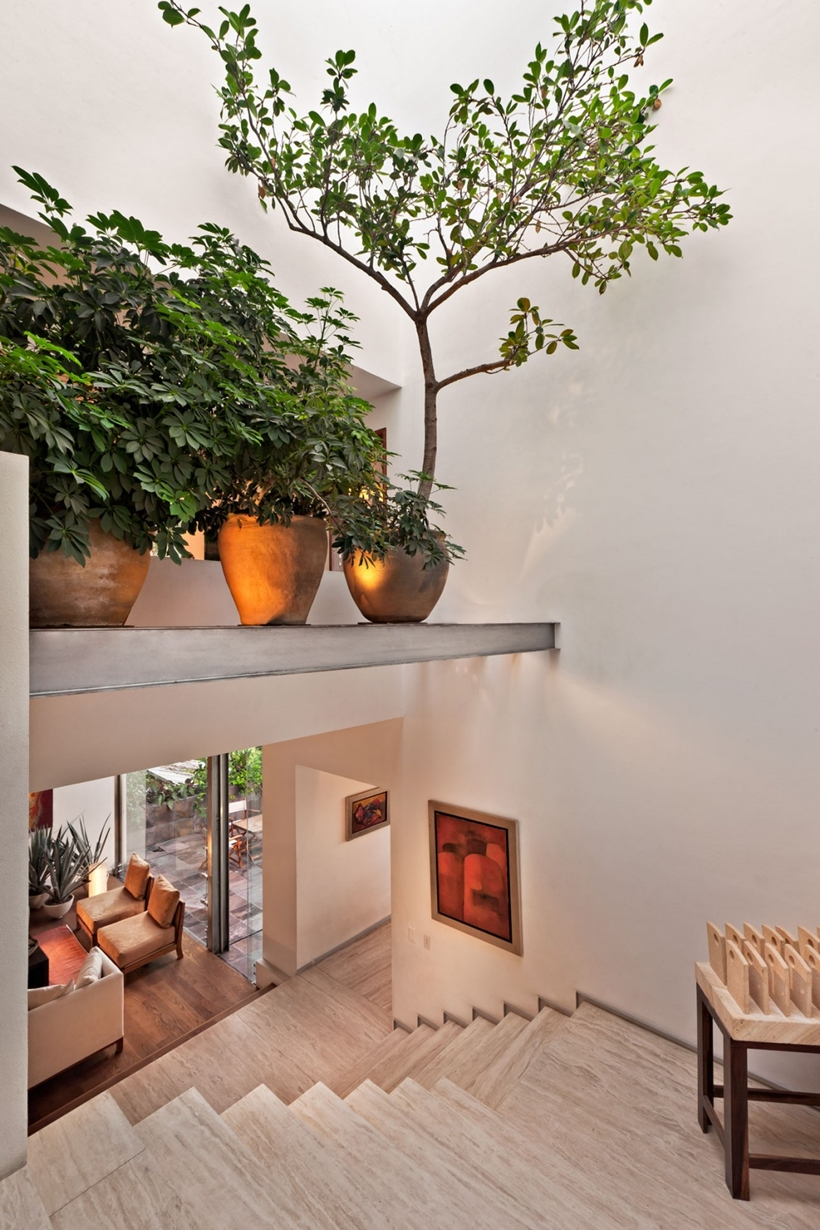 Cây xanh trong trang trí nội thất căn biệt thự sang trọng