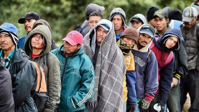 Perbedaan Antara Imigran dan Pengungsi