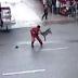 Vídeo mostra momento que cachorro enlouquece e ataca 23 pessoas, assista