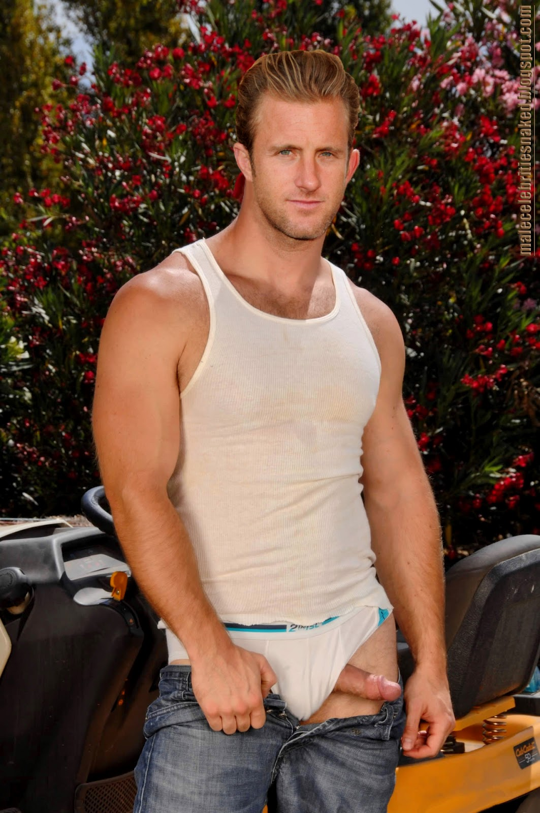 Naked scott caan fake nudes can not