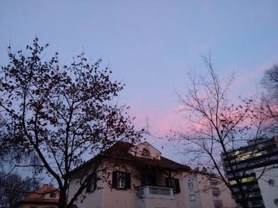 Fotografia colorida de algumas casas e árvores tendo ao fundo céu zul com nuvens rosadas de final de tarde.