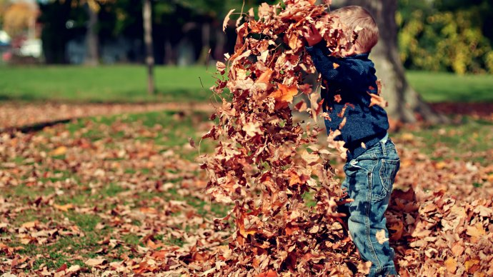 Wallpaper: The Kid is Playing with Fall Leaves