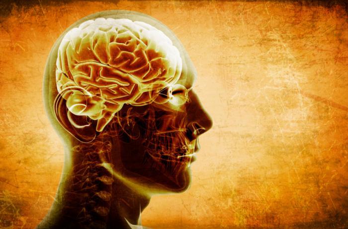 Lewy Body Dementia or Alzheimer's Disease?