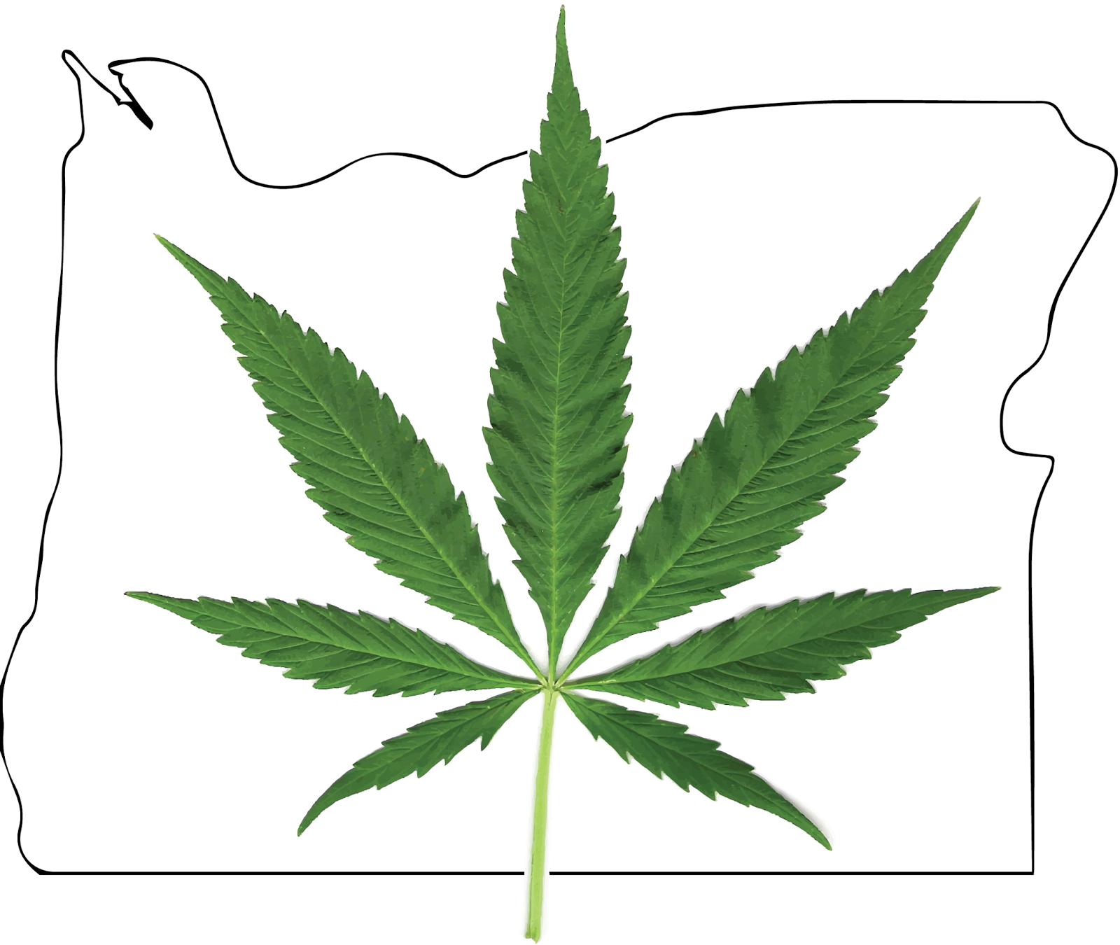 Portdaddia: Marijuana Shops' Names Entertain Kids Despite Glowering