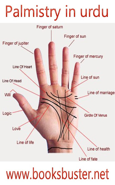 Palm Reading - Palmistry A Guide to Reading Hand Reading