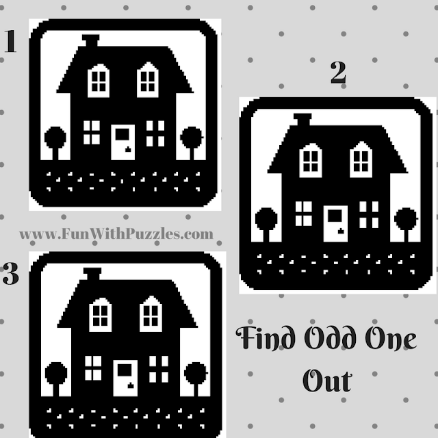 Odd One Out Hut Picture Puzzle-2