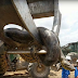 Construction workers discover 10m anaconda on a building site (photos)