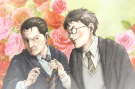 Harry Potter BL.