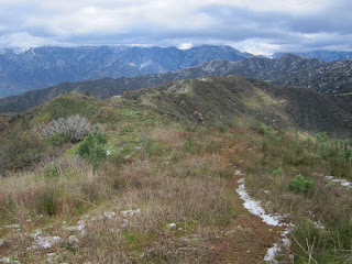 View north from Glendora Mountain (3322'), Angeles National Forest