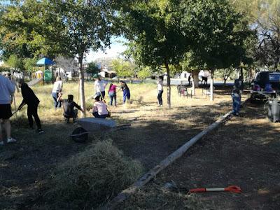 Retira Cobach 32 toneladas de basura de áreas verdes en la ciudad