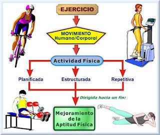 Precauciones y contraindicaciones para los ejercicios de amplitud de movimiento