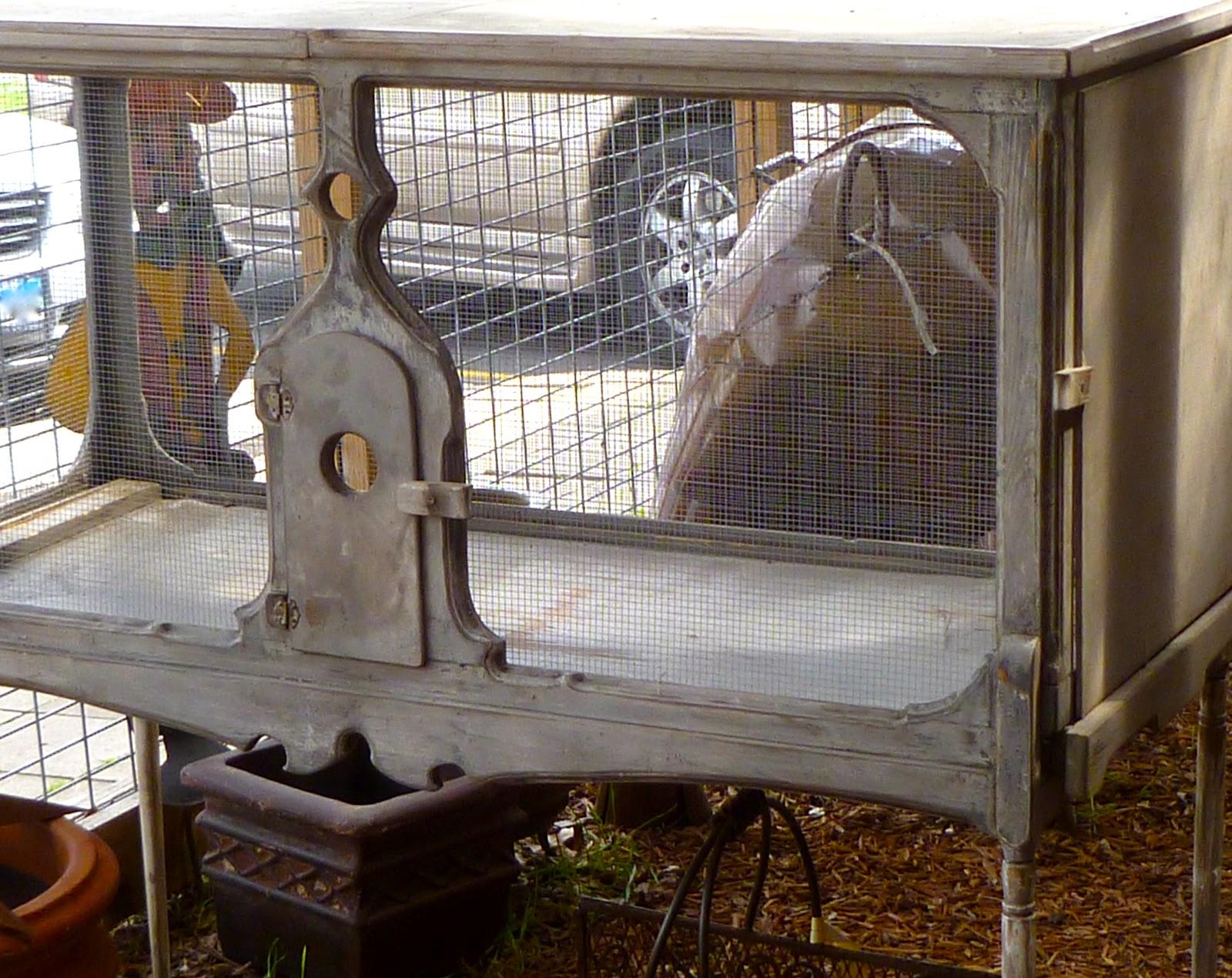 october grace rabbitry. Black Bedroom Furniture Sets. Home Design Ideas