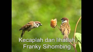 Chord Kunci Gitar Lagu Rohani Franky Sihombing / Kecaplah dan Lihatlah