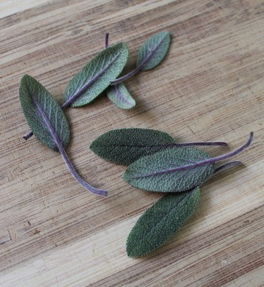 fresh purple sage leaves