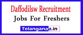Daffodilsw Recruitment 2017 Jobs For Freshers Apply