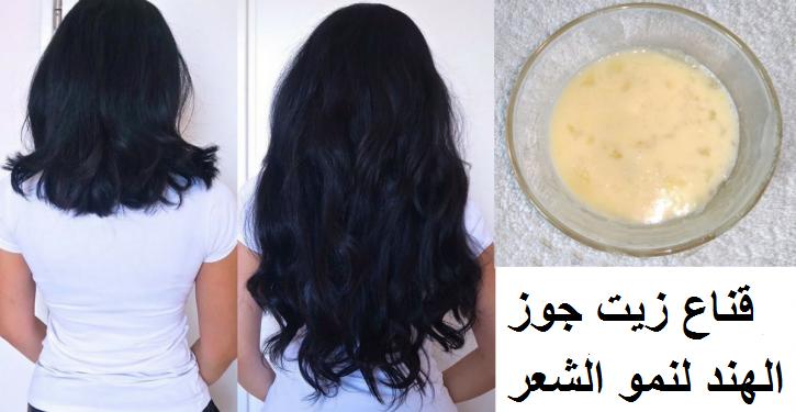 كيفية إعادة نمو الشعر مع زيت جوز الهند (وصفة)