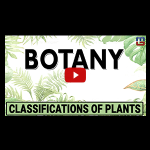 Botany | Classification Of Plants | General studies | All Competitive Exams