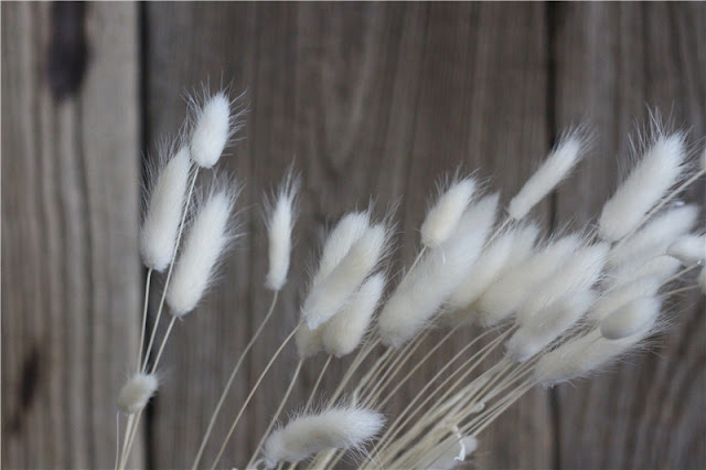 Pembalut Herbal Wanita Jaman Dulu Rumput Kering