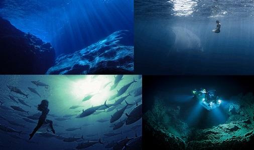 Dünya Okyanusunun Sadece Yüzde 5'i Keşfedildi