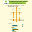 Consumer Electronics Usage Report - Infographics - Mobile and Laptop Accessories