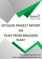 Yeast from Molasses Plant Project Report