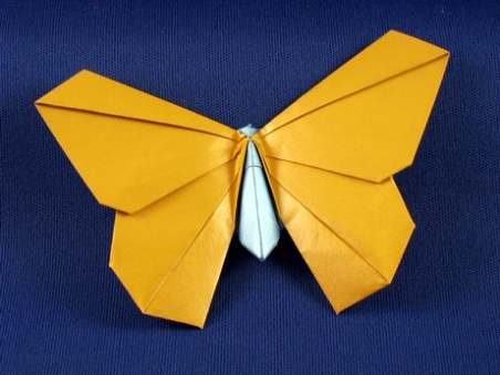 Origami Butterfly Origamido Lafosse 3D