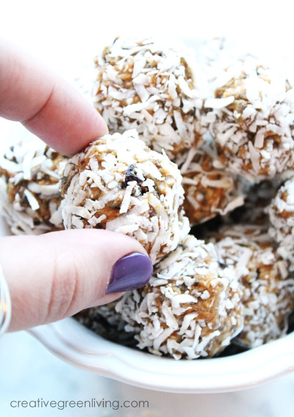 How to make energy balls your whole family will eat! These tasty and healthy vegan energy balls are a great snack that tastes like a dessert due to the yummy chocolate peanut butter flavors in these power bites. Recipe is healthy, easy, vegan and gluten free. #creativegreenliving  #creativegreenkitchen #vegan #glutenfree #energyballs #energybites #powerbites #proteinballs #healthysnacks #vegansnacks #glutenfreesnacks