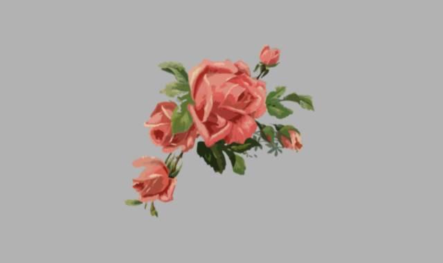 Zweig mit roten Rosen