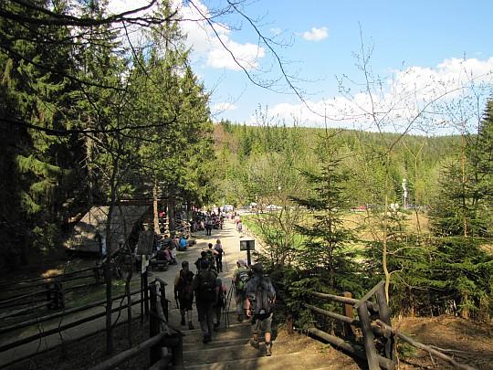 Wchodzimy na Przełęcz Lipnicką (1010 m n.p.m.), zwaną również potocznie przełęczą Krowiarki