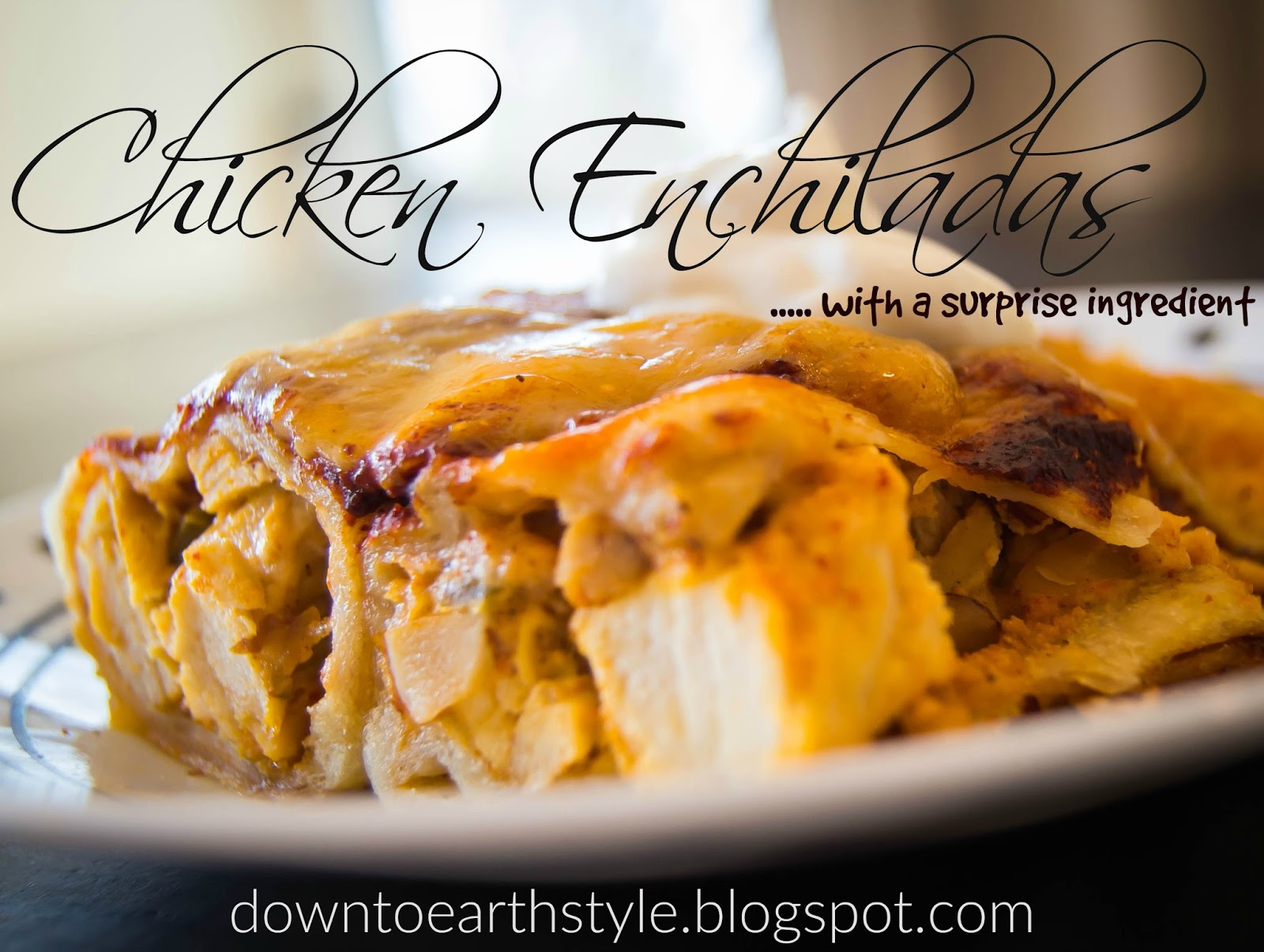 Down to earth style chicken enchiladas yum chicken enchiladas yum this recipe was inspired by a food network forumfinder Choice Image