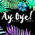 AY OYE - RAYO Y TOBY (VIDEO LYRIC)