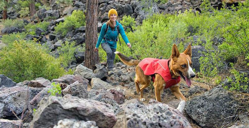 Choisir un manteau pour son chien