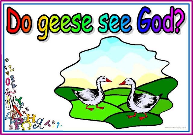 Да ли гуске виде бога?