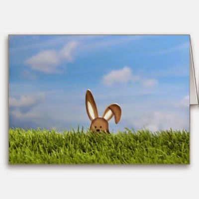 Easter Bunny in the Meadow - Fun Easter Greeting Card
