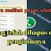Cara melihat chat Wa yg sudah dihapus tanpa PC