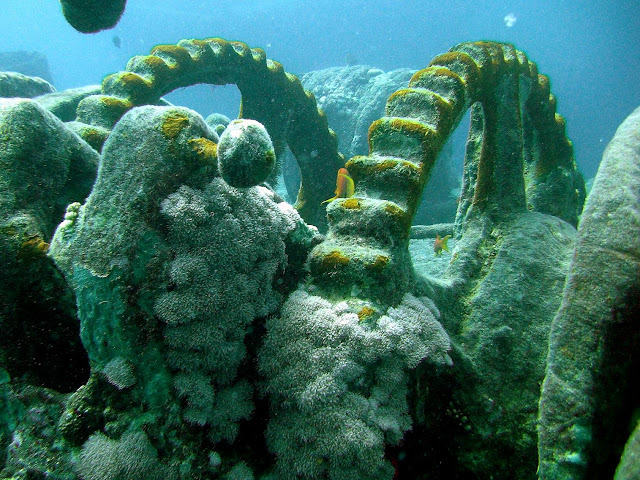 thistlegorm wreck, northern red sea, egypt
