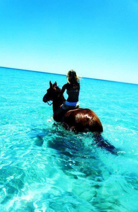 Jamaica, Travel, Horse, Horseriding, Lucea