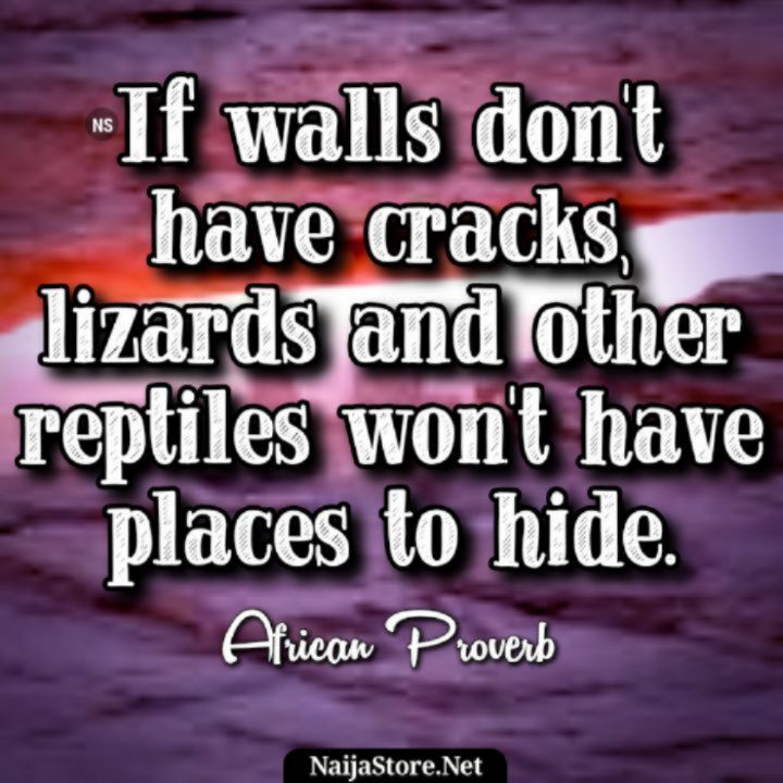 African Proverbs: If walls don't have cracks, lizards and other reptiles won't have places to hide - Proverbial Quotes